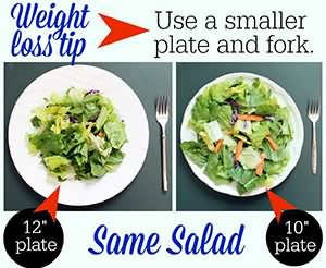 smaller plate control hunger