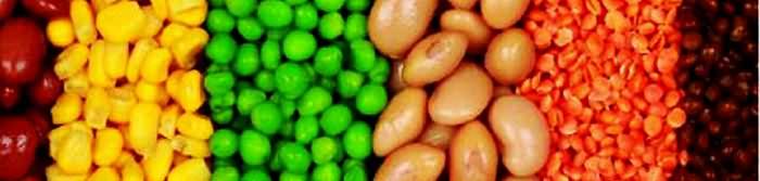 Legumes Fiber Food