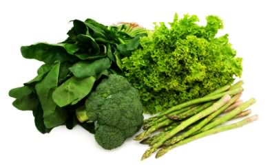 Leafy Green Vegetable